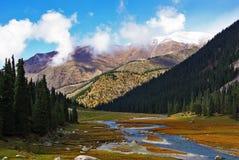 Córrego nas montanhas Kirgizia Foto de Stock