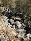 Córrego natural fotografia de stock