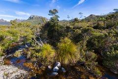 Córrego natural da água que corre através da rocha vulcânica do basalto em foto de stock royalty free