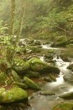 Córrego nevoento da montanha Fotografia de Stock