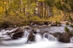 Córrego no bispo California Fotografia de Stock