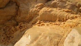 Córrego no deserto vídeos de arquivo