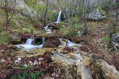 Córrego no desfiladeiro Tasnei Baile Herculane, Romênia Fotografia de Stock Royalty Free
