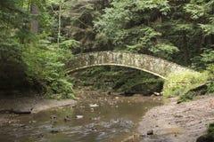 Córrego no fundo do desfiladeiro fotografia de stock