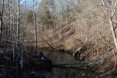 Córrego no inverno foto de stock