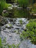 Córrego no jardim foto de stock royalty free