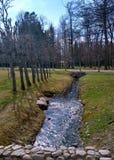 Córrego no parque Imagem de Stock