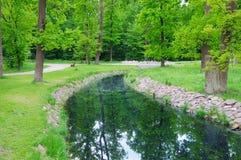 Córrego no parque Foto de Stock Royalty Free
