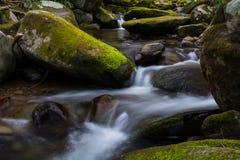 Córrego no parque nacional de Great Smoky Mountains Fotografia de Stock