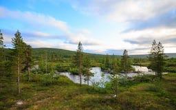 Córrego no parque nacional de Lierne Imagens de Stock Royalty Free