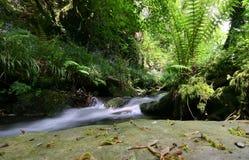 Córrego no vale Imagem de Stock