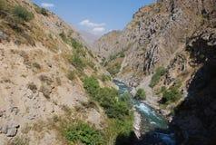 Córrego no vale de Tien Shan Imagens de Stock Royalty Free