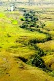 Córrego no vale, Madagascar Imagem de Stock
