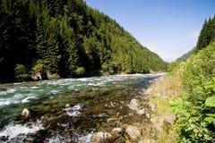 Córrego norueguês foto de stock royalty free