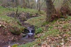 Córrego pequeno fotos de stock royalty free