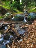 Córrego pequeno Imagens de Stock Royalty Free