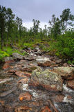 Córrego pequeno Foto de Stock Royalty Free