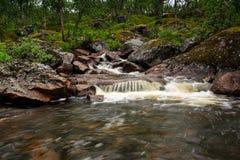 Córrego pequeno Imagem de Stock Royalty Free