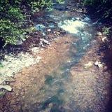 Córrego pequeno bonito Fotografia de Stock