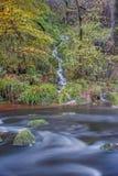 Córrego pequeno da água que corre em um rio maior imagens de stock royalty free
