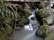 Córrego pequeno da montanha. fotografia de stock