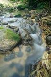 Córrego pequeno e bonito do beauti gigante correndo através da água Fotografia de Stock Royalty Free