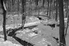 Córrego pequeno na neve do inverno imagem de stock