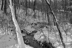 Córrego pequeno na neve do inverno imagens de stock