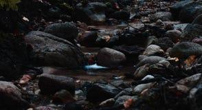 Córrego pequeno que corre através de rochas foto de stock royalty free