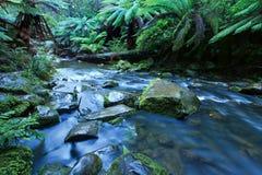 Córrego perto das quedas de Beauchamp Imagem de Stock