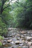 Córrego preto da montanha Imagem de Stock Royalty Free