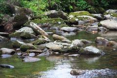 Córrego preto da montanha Imagens de Stock Royalty Free