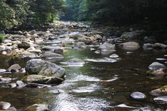 Córrego preto da montanha Fotos de Stock Royalty Free