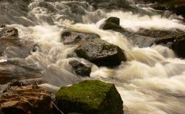 Córrego que flui sobre rochas Fotografia de Stock