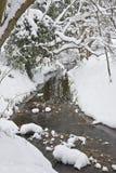 Córrego que funciona através da floresta do inverno Foto de Stock