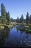 Córrego que Meandering através de um campo fotos de stock