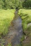 Córrego quieto nas montanhas imagem de stock royalty free