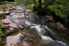 Córrego rápido Fotografia de Stock