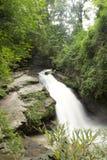 Córrego rochoso Imagens de Stock