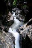 Córrego Running Imagem de Stock