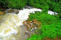 Córrego running com água, as pedras e ilustração espumosas da paisagem da natureza das hortaliças toda ao redor - imagem de stock