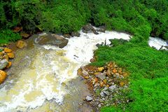 Córrego running com água, as pedras e ilustração espumosas da paisagem da natureza das hortaliças toda ao redor - imagens de stock royalty free