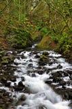 Córrego selvagem com água lisa de seda Fotos de Stock Royalty Free