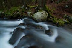 Córrego selvagem em baixo Tatras Fotos de Stock