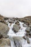 Córrego selvagem em Suíça Imagem de Stock