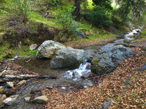 Córrego sobre rochas Imagens de Stock Royalty Free