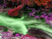 Córrego tóxico Foto de Stock