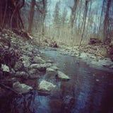 Córrego tranquilo Fotos de Stock Royalty Free