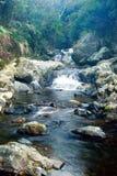 Córregos Foto de Stock
