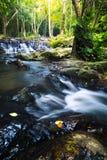 Córregos da montanha Imagem de Stock